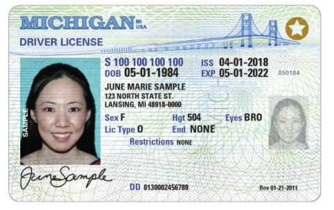 Picture of Sample Drivers License