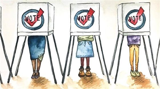 Voter Cartoon