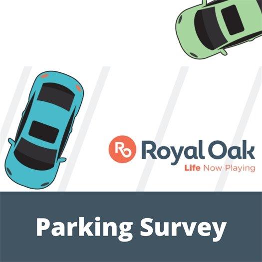 Parking Survey Logo