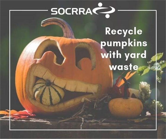 Pumpkin Recycling Flyer
