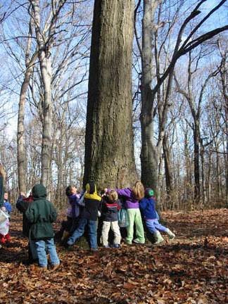 A group of children hugging a large tree.